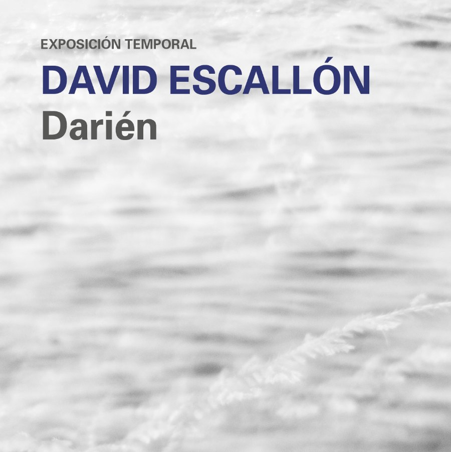 exposiciones-bacanika-darien-david-escallon