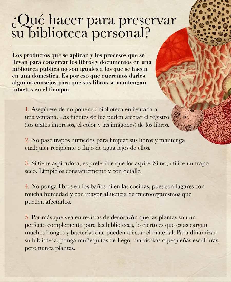 Los hongos y bacterias que habitan los libros - Revista Bacánika