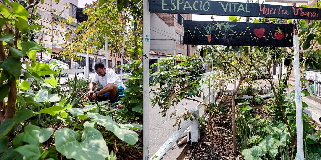 Bacanika huertas urbanas 05 - Huertas públicas en las comunas de Medellín.