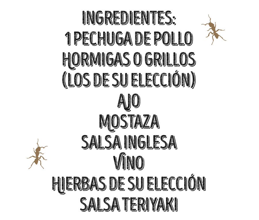 ingredientes insectos