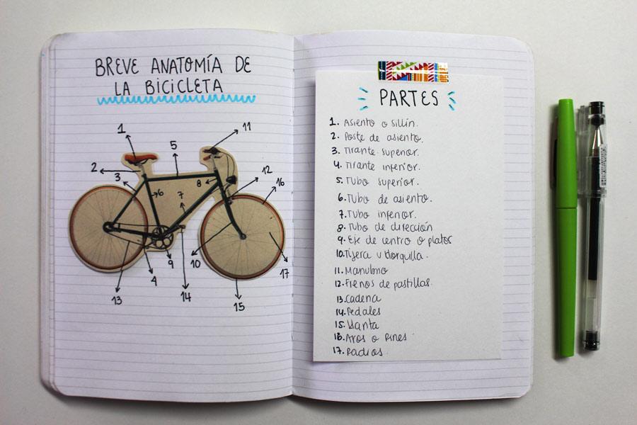 Apuntes de una ciclista nerd - Revista Bacánika
