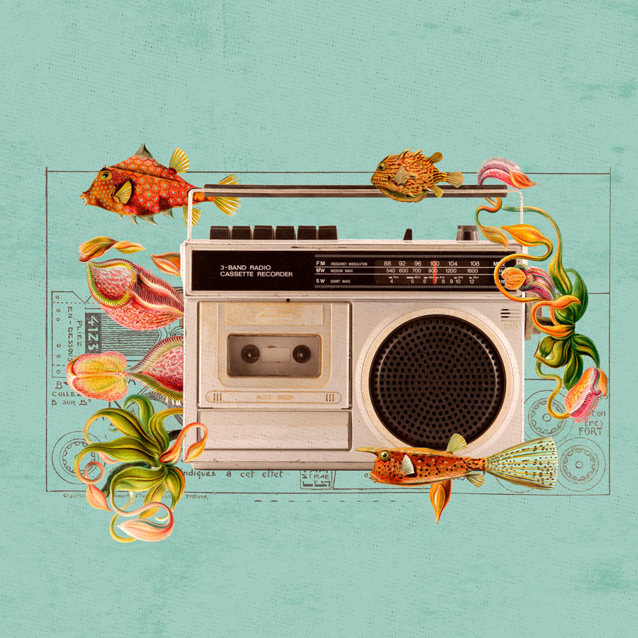 playlist ilustradores MEX