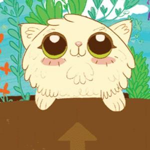 10 pasos para amar a un gato