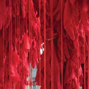 El gesto suave de Ana Belén Cantoni