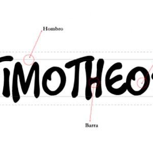 Manual de estilo de Timoteo